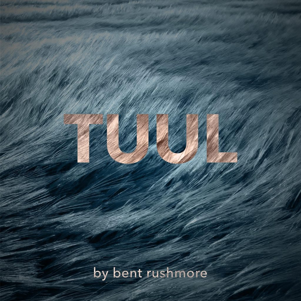 Tuul by Bent Rushmore. Meditative/ambient electronic music album 2020